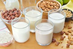 Different vegan milks. Royalty Free Stock Photos