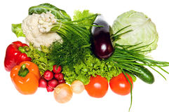 Different Vegetables Stock Images