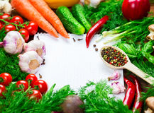 Different vegetables Royalty Free Stock Photography