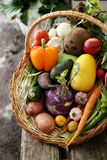 Different vegetables in big basket Royalty Free Stock Photography