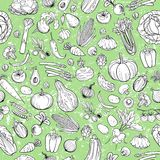 Different vegetables drawings Royalty Free Stock Photo