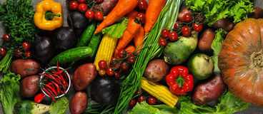 Different vegetables. Many kinds of fresh vegetables Stock Photos