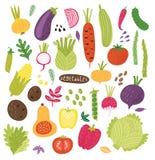 Different vegetables. Vector set. Illustration stock illustration