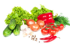 Different vegetables Stock Image