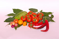 Different vegetables on white background stock photos