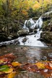Autumn leaves in the waters of Saluda falls in North Carolina. Different view of Saluda waterfall in the Height of fall season stock photos