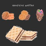 Different wafer cookies waffle cakes pastry cookie biscuit delicious snack cream dessert crispy bakery food vector Stock Photography
