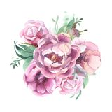 Different watercolor flower romantic collection. Watercolor romantic bouquet of red  flowers isolated on white background. peonies for card Royalty Free Stock Images