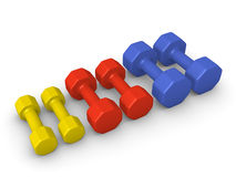 Different weight dumbbells Stock Image