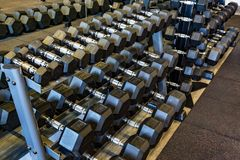Different weight dumbbells. Sports Equipment stock photo