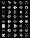 Different white snowflakes Stock Image