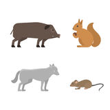Different wild animals dangerous vertebrate canine characters large predator vector illustration. Wilderness nature mammals Royalty Free Stock Photos