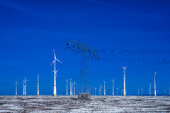 Different windmills with power pole transmission line in winter landscape Royalty Free Stock Photo