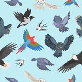 Different wing wild flying birds seamless pattern background vector illustration Stock Photography