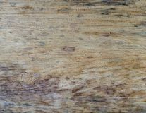Different wood textures and backgrounds I royalty free stock photo