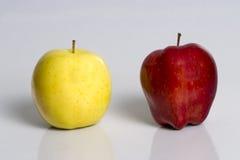 Differente e gli stessi 2 Fotografia Stock Libera da Diritti