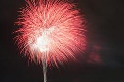 Differente variopinto dei fuochi d'artificio Fotografie Stock Libere da Diritti