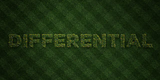 DIFFERENTIAL - fresh Grass letters with flowers and dandelions - 3D rendered royalty free stock image Stock Images
