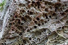 Differential solution of a limestone rock. Due to the chemical weathering. Image +/- 0.5 m or 1.5 ft across. Max size weathered holes  +/- 5 cm or 2 inches Stock Photos