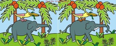 Differenza Elephant-10 Immagine Stock