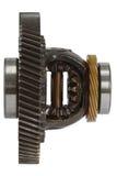 Differenzial des Getriebes, lokalisiert auf weißem Hintergrund Stockbild