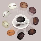 Differrent Coffee Beans Around A Coffee Cup Stock Photos