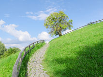 Difficult cobble stones upward path Royalty Free Stock Image
