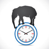 Elephant on clock Stock Images