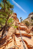 Difficult trail in the mountains. Climbing Angels Landing in Zion National Park, Utah, USA Royalty Free Stock Photo