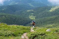 The difficult trekking in Carpathian Mountains. Hiker climbs to the top of the steep slope. The difficult trekking in Carpathian Mountains Royalty Free Stock Photo