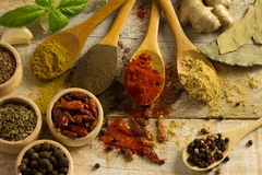 Diffrent spices Stock Photography
