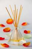 Diffuser and frangrance Stock Photography