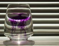 Diffusion der blauen Tinte in einer transparenten Glasschale mit klarem Wasser vor dem hintergrund eines gestreiften Schirmes mit lizenzfreie stockfotografie