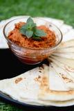 Diffusione calda sana con i tagli della tortiglia Fotografia Stock