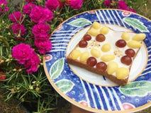 Diffusione mista del yogurt dell'uva e del ginkgo Fotografie Stock
