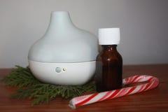 Diffusore dell'olio essenziale con menta piperita & il sempreverde Immagine Stock
