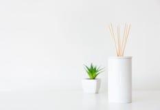 Diffusore e pianta in vaso domestici fotografia stock libera da diritti