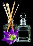 Difusor da fragrância Fotografia de Stock