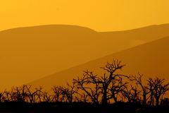 Dig for fire. Sunset colours in the desert stock photo