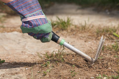 Dig a hole Royalty Free Stock Photography