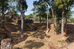 Dig Site Marked Trees by at Wat Pra Khaeo Kamphaeng Phet Province, Thailand Royalty Free Stock Photo