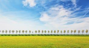 Diga con una fila degli alberi nel ploder di Beemster Fotografie Stock Libere da Diritti