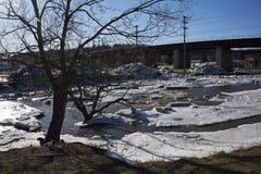Diga del ghiaccio - fiume di Ganaraska nella speranza del porto, Ontario Fotografia Stock Libera da Diritti
