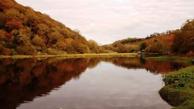 Diga di Lopwell dartmoor devon Il Regno Unito Immagini Stock Libere da Diritti