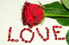 Diga el amor con una Rose Fotos de archivo libres de regalías