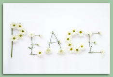 Diga-o com flores: Paz Fotografia de Stock