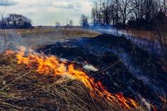 Digamos parar el quemar de la hierba seca, él es peligroso fotografía de archivo