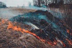 Digamos parar el quemar de la hierba seca, ?l es peligroso fotografía de archivo