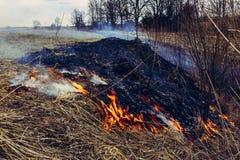 Digamos parar el quemar de la hierba seca, ?l es peligroso fotos de archivo libres de regalías