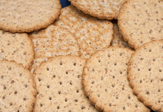 Digestive. Image of wheaten digestive biscuits Royalty Free Stock Photos